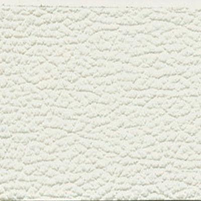 Eco Pelle Bianco